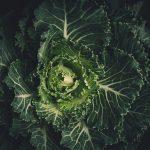 5 produktów, które warto jeść