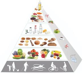 Piramida zdrowego żywienia i aktywności fizycznej [za: Jarosz i wsp. 2017]