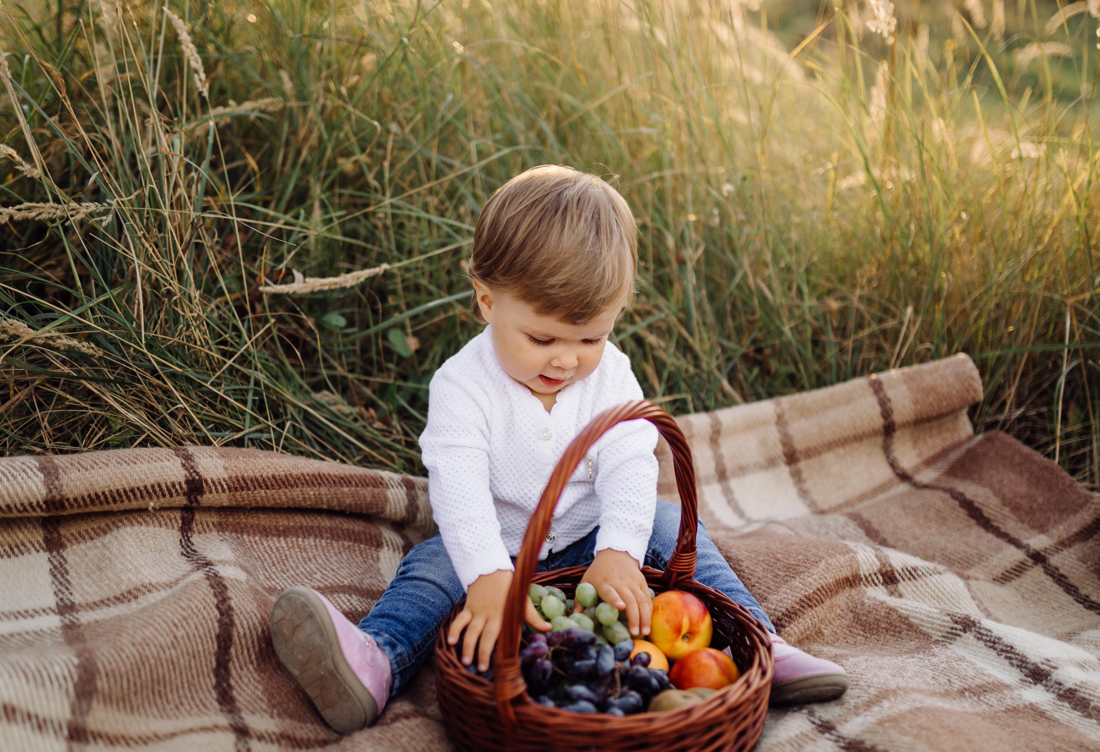 Małe dziecko na pikniku z koszem owoców