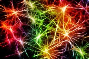 Neurony mózg