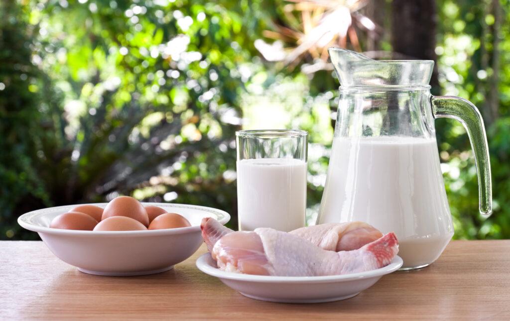 Białko na redukcji